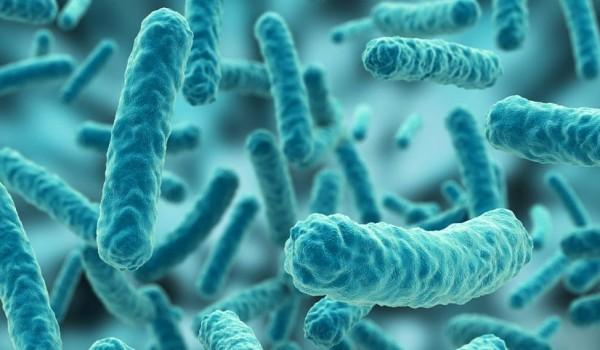 microbiome1_opt